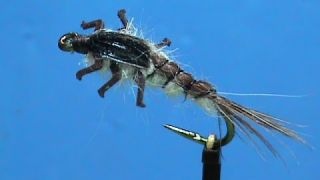 Beginner Fly Tying a LivelyLegz Generic Nymph with Jim Misiura