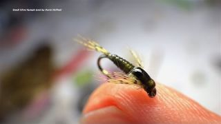 Tying a Small Olive Nymph with Davie McPhail