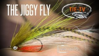 Tie TV - Jiggy Fly - Daniel Bergman