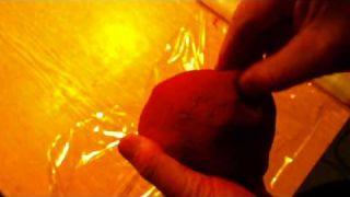 Jednoduchá a rychlá domácí výroba boilies