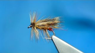 Tying a Dark Claret Peter Sedge with Davie McPhail