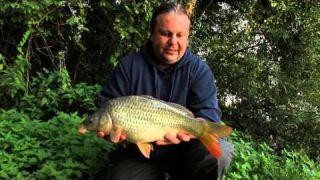 Lov kapra - svazová voda 24h