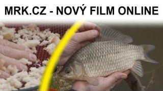 Nový film MRK.cz - Na karasy se splávkem