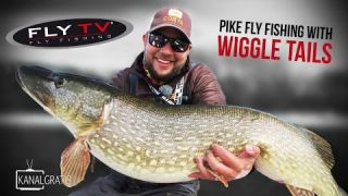 FLY TV - Pike Fly Fishing with Wiggle Tails