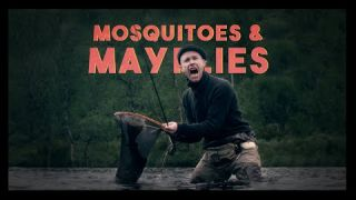 Mosquitoes & Mayflies | EP1 | Somewhere Else