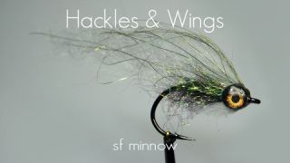 Fly Tying SF Minnow | Hackles & Wings
