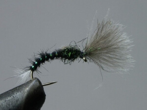 CDC black buzzer